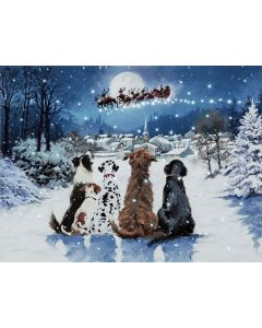 Christmas Dogs Looking Up LED Light up Canvas - Snowtime