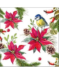 Bird On Poinsettia White Pack of 20 Christmas Paper Napkins