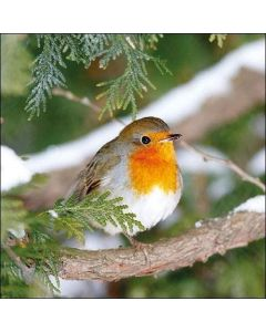 20 Christmas This Robin in Trees Napkins Serviettes