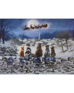 Christmas Cats Light up Canvas Picture Wall Art 40 x 30cm